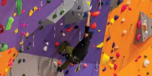 Découvrez l'escalade @ salle d'escalade - complexe sportif Stéphane Traineau | Mortagne-sur-Sèvre | Pays de la Loire | France