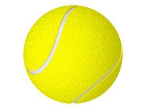 Inscriptions tennis saison 2019/2020 @ Salle de Tennis